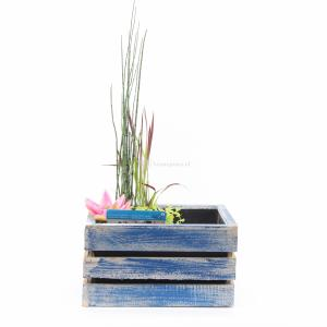 mini-vijver-in-houten-kistje-blauw-1-0_300x300