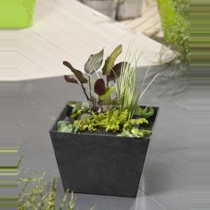 mini-vijver-zwart-met-planteneiland-1-0_300x300