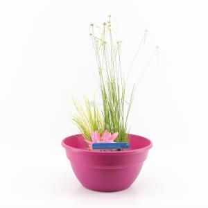 mini-vijver-kunststof-roze-1-0_300x300